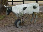 Steer roping machine at Brian's Ranch