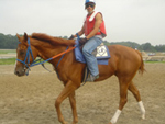 Roberto, the exercise rider, working out Ahvee's Destiny.