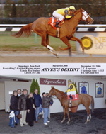 Avram C. Freedberg's racehorse, Ahvee's Destiny, wins for the first time by four lengths in the last race of 2006 at Aqueduct. Instead of taking the lead and fading, as she had done in her two prior efforts, Ahvee's Destiny took the lead and never relinquished it. A very exciting first win in her last race as a two-year-old filly! Included in the winner's circle are from left: Avram C. Freedberg, trainer Linda Rice, Harvey Fishman, and jockey, Chuck C. Lopez.